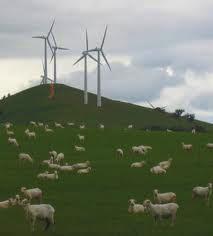 Local Energy Generation