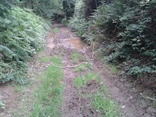 glenealy mucky path