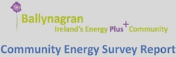 Ballynagran Community Energy Survey Report