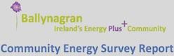 Ballynagran Community Energy Survey Report
